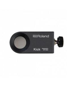 Roland - Rt-30k