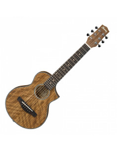 Ibanez - EWP14WB-OPN  Acoustic EWP