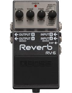 Boss - RV-6