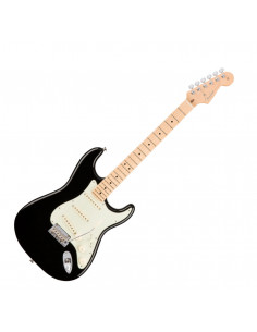 Fender - American Pro Stratocaster, Maple Fingerboard, Black