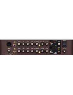 Boss - Acs-Pro Acoustic Singer Pro Instrumental Amplifiers
