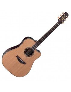 Takamine,DN15C Natural Serie