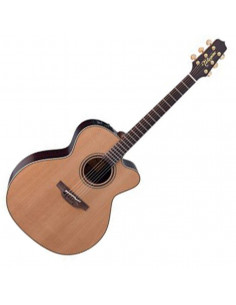 Takamine - DN25C Natural Serie