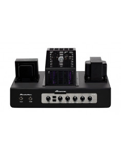 Ampeg - PF-50T, Bass Head