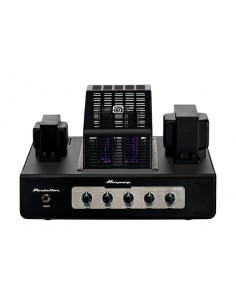Ampeg - PF-20T, Bass Head