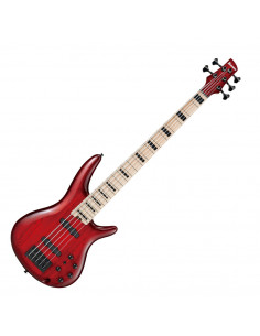 Ibanez,ANB205-TWB,Transparent Wine Red Burst