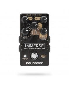 Neunaber,Immerse Mk Ii Reverberator