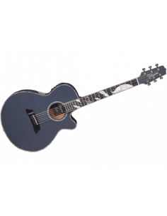 Takamine,Limited Edition 2019 Thinline Moon