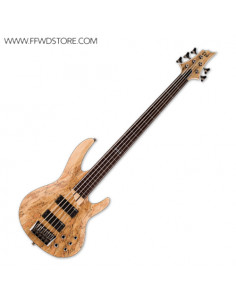 LTD - B-205SM FRETLESS